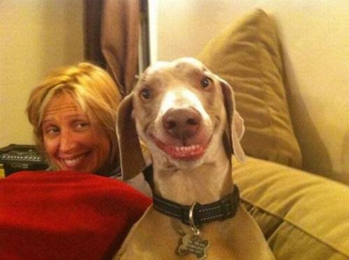 Szczęśliwe zwierzę