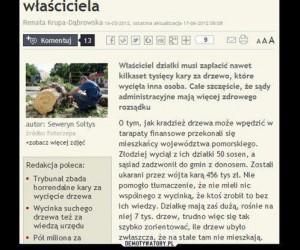 Polskie absurdy