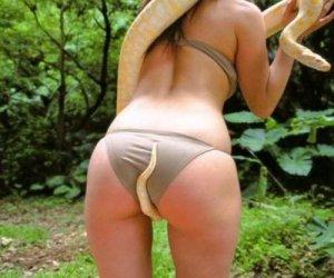 Wąż wie o co chodzi