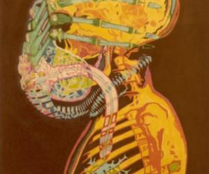 Anatomia obcego