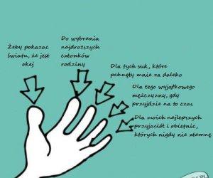 5 palców, 5 powodów