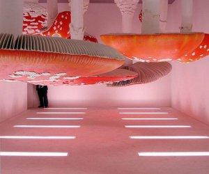 Sala muchomorów