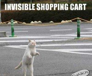 Niewidzialny wózek