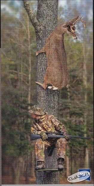 Noż w mordę, gdzie ten jeleń uciekł?