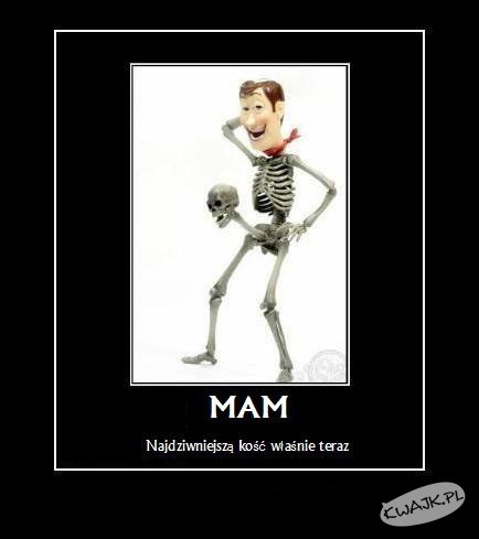 Dziwna kość...