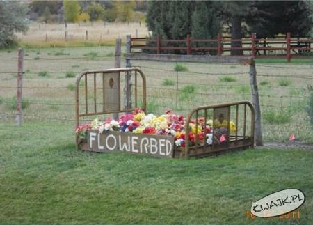 Kwiatowe łóżko