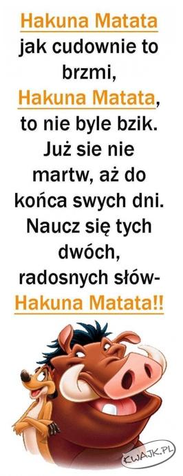 Hakuna Matata - zachowaj spokój