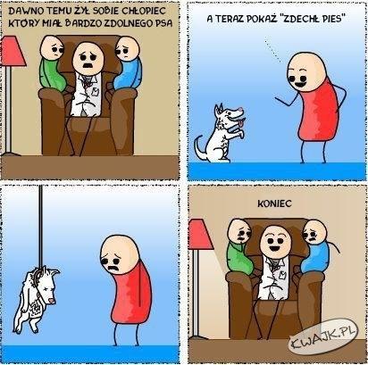 Bajka o psie