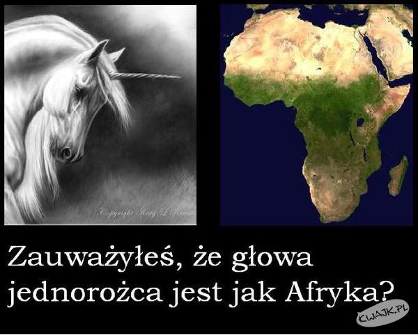 Co ma wspólnego Afryka z jednorożcem?