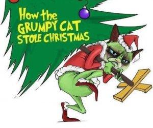 Jak marudny kot ukradł święta