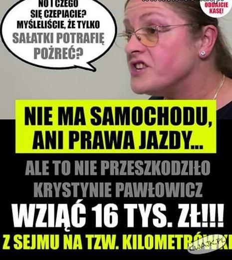 Przygody Pawłowicz