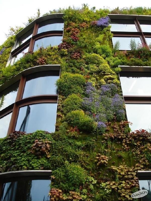 Dom z zieleni