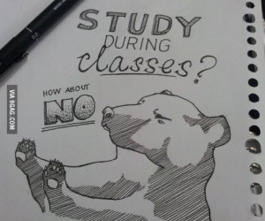 Zamiast studenckich notatek