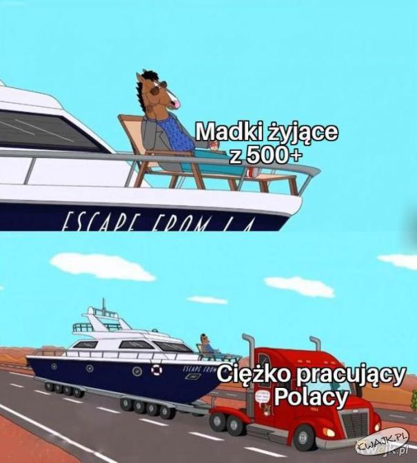 Madki żyjące z 500+ vs. ciężko pracujący Polacy