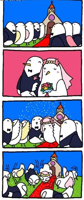Gołębi ślub