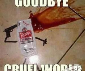 Żegnaj okrutny świecie!