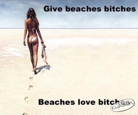 Plaże kochają takie sucze