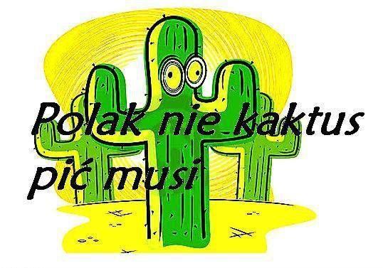 Polak nie kaktus!