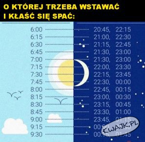 Czy godziny, o których chodzisz spać są w tej rozpisce? ;)