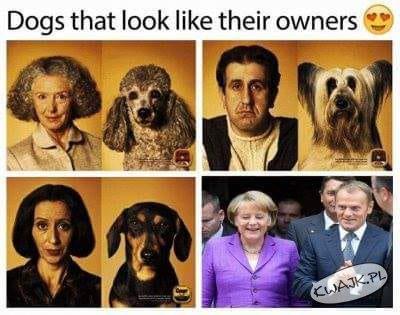 Pieski i ich właściele...
