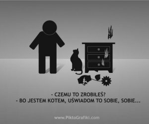 Koty...