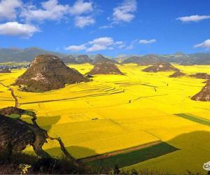 Rolnicze regiony też są piękne