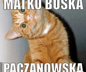 Paczanowska