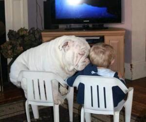 Przytul!