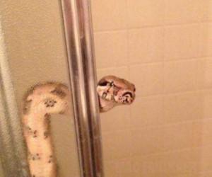 Stary, podaj ręcznik