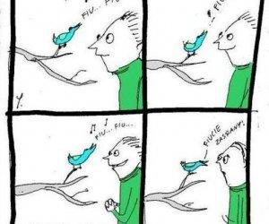 Ćwierkanie ptaków