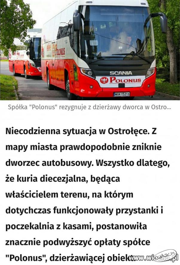 Niecodzienna sytuacja w Ostrołęce