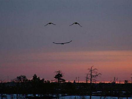 Uśmiech nieba