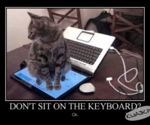 Nie siedzieć na klawiaturze? No problem!