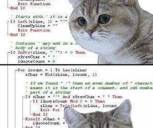 Programista