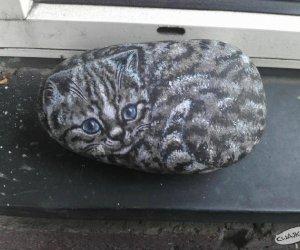 Kot dla leniwych