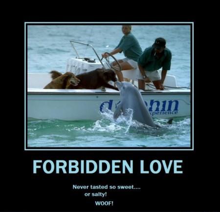 Zakazana miłość