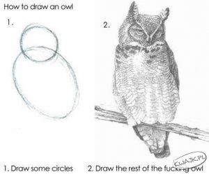 Jak narysować sowę?
