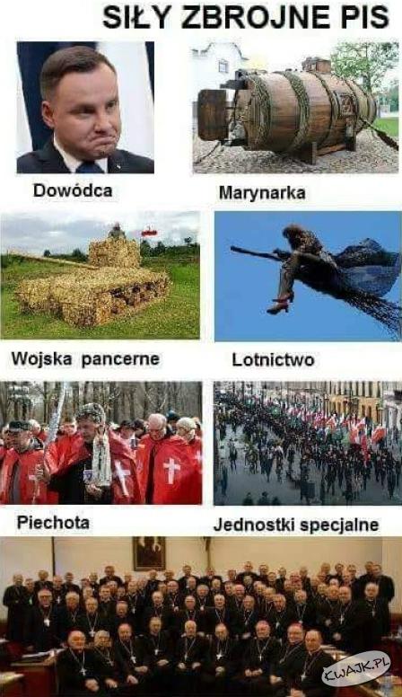 Siły zbrojne PiS