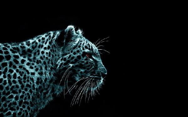 Negatyw tygrysa