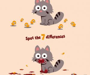 Znajdź 7 różnic