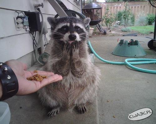 Ojej, to dla mnie?