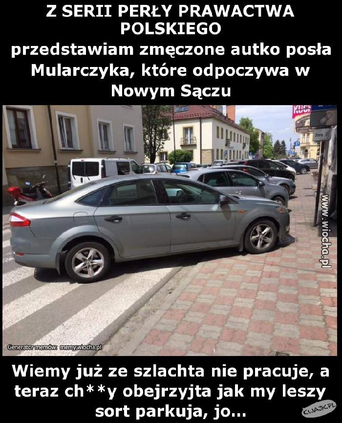 Nowy Sącz. Parkowanie level master